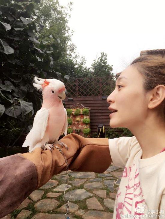李小冉与鹦鹉对话 满屏粉嫩太显可爱!(图)