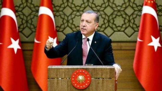 土耳其总统埃尔多安指责西方支持图谋政变分子