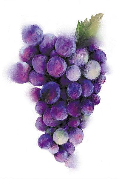 一串7.3万人民币 日本天价葡萄到底贵在哪儿