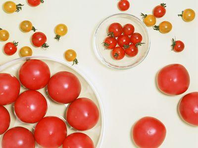 美容养生:拥有十种功效的养颜西红柿