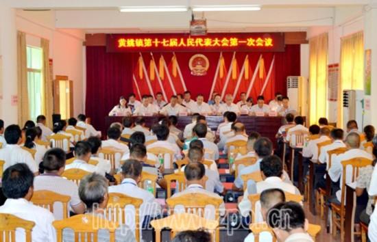 县领导到各乡镇指导十七届人大一次会议图片