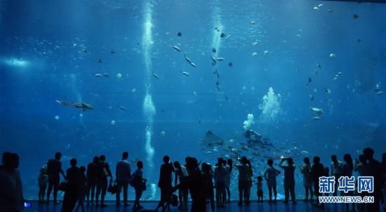 南昌:海洋馆内度炎夏
