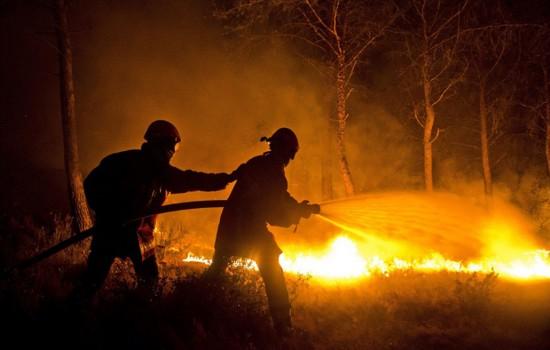 法南部森林大火肆虐 3000公顷土地受灾