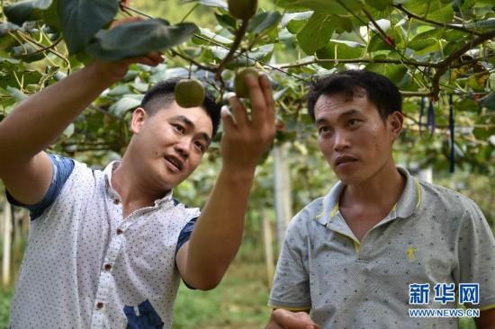 #(创客逐梦)(1)广西桂林:瑶乡青年返乡做创客