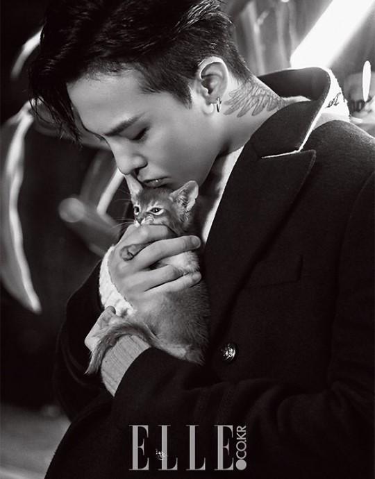 特别是关于权志龙颈部纹身和宠物猫的特写镜头,受到了粉丝们的热烈图片