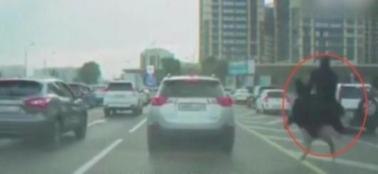 有这座驾不怕堵车!男子骑鸵鸟狂飙超车 路上司机惊掉下巴(图)