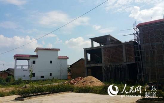田心村新农村建设新一期住宅别墅已有43户在建。
