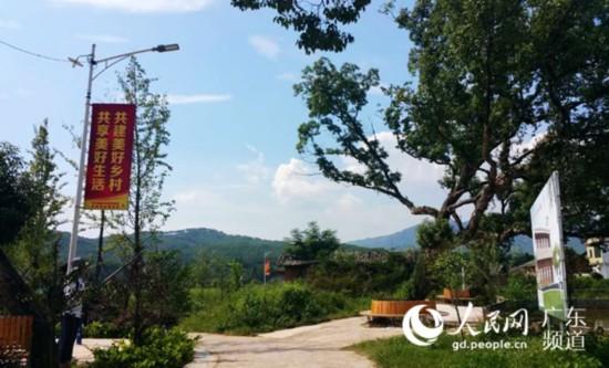 田心村小公园一景。
