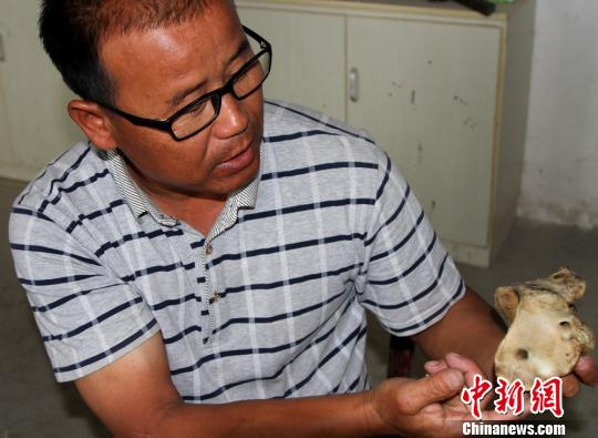 探访新疆骨雕技艺代表性传承人