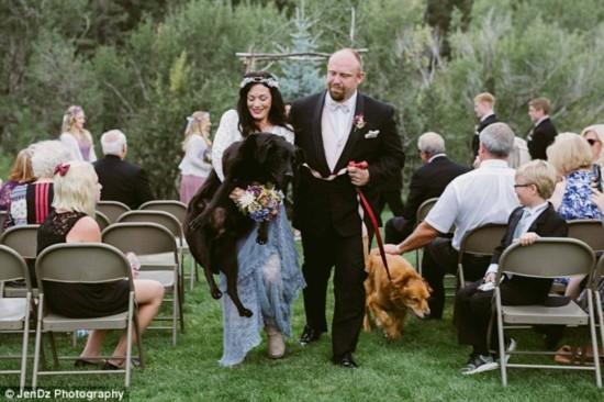 癌症晚期狗狗陪主人完婚 婚礼成泪海