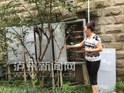 女士的水表安裝在3號樓側牆