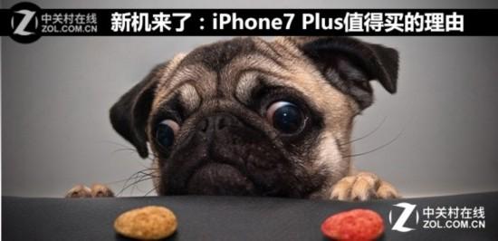 新机来了:iPhone7 Plus值得买的理由