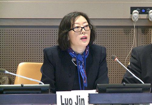 中国常驻联合国使团公使衔参赞罗津致辞