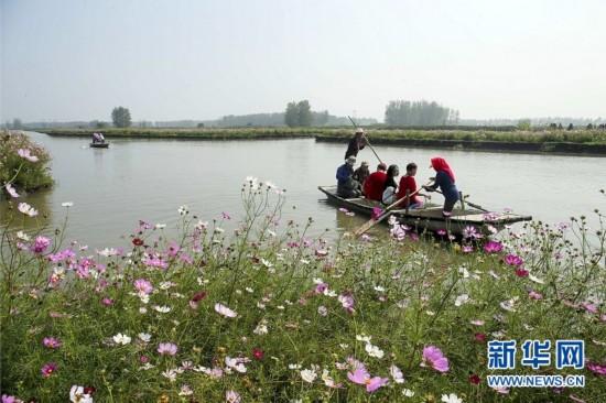 兴化千垛景区姹紫嫣红 吸引众多游客前来观赏