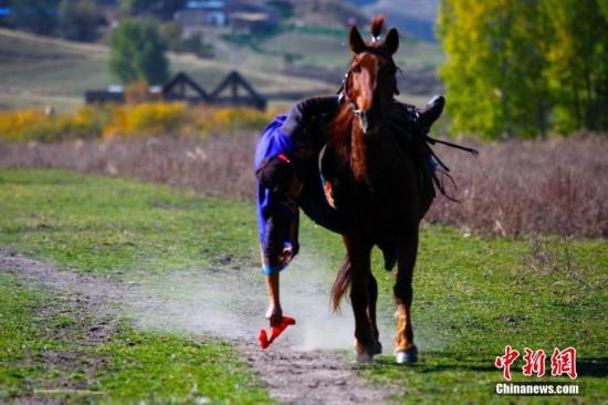 新疆那拉提草原上演骑马捡硬币