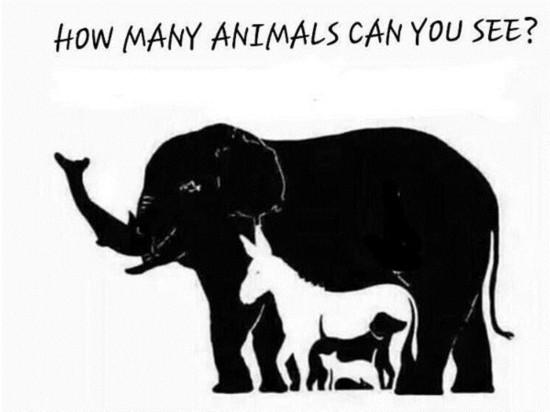 够胆就来!这张图里有16种动物,看看你一眼能找出几种