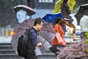 组图:暴雨中的深圳