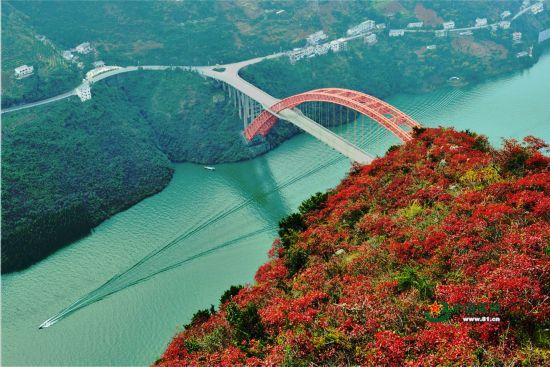 巴山渝水长征路 如果红军看到现在的桥