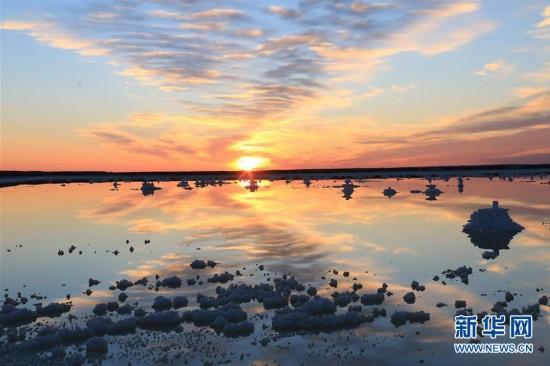 """新疆玛纳斯盐湖:""""盐花""""之美"""
