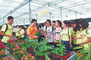 玉林高中组织高中开展实践活动学生夏季女鞋图片