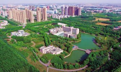 """焦作创建国家森林城市 为转型发展提供""""绿色动能""""图片"""