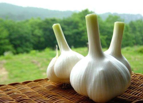 生吃大蒜最能防癌 五类人食用却会短命