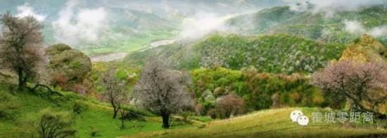 中华福寿山――新疆霍城的后花园天然氧吧