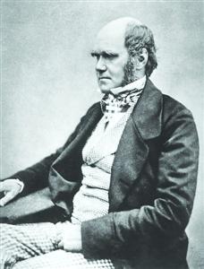 1854年时的达尔文