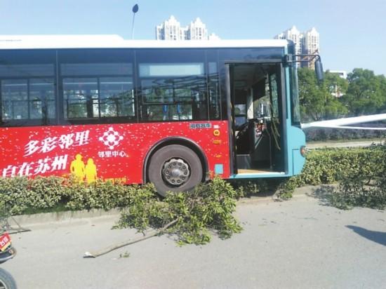 苏州一辆货车撞上公交车 多名乘客受伤