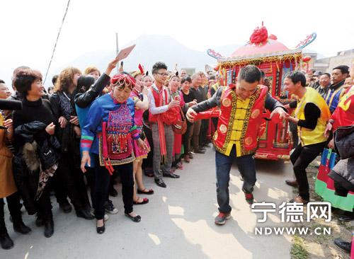 畲族婚嫁迎亲习俗表演轿夫三次摇晃轿子戏新娘。