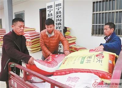 徐州睢宁已有293个村党支部 领办合作社380家