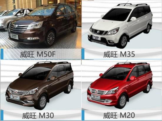 北汽威旺将推多款新车 涵新能源/7座SUV-图3