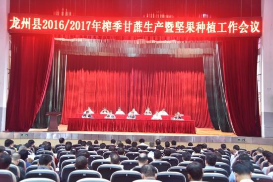 龙州召开2016/2017年榨季甘蔗生产暨坚果种植工作会议