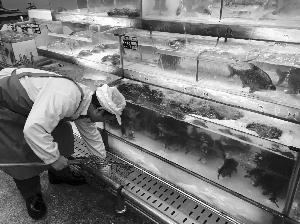 网传南京禁售活鱼记者探访市场贩卖正常