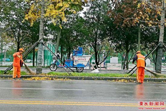 南京溧水行道树叶纷纷凋落 环卫工全天候清扫