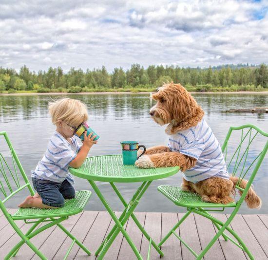 美3岁男童和爱狗温暖萌照走红网络