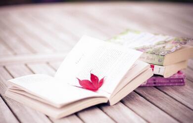 托福阅读:10秒就可以搞定阅读长难句的方法