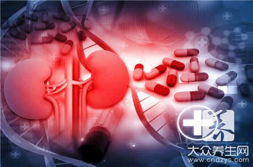 肾虚的表现 白领养生要吃些补肾的食物