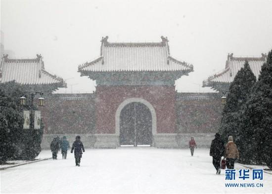 """辽宁沈阳:""""大雪""""过后下大雪"""