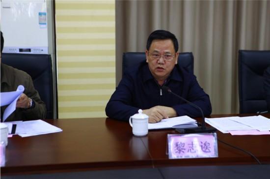 自治區安委會副主任黎志?到百礦集團開展安全工作調研