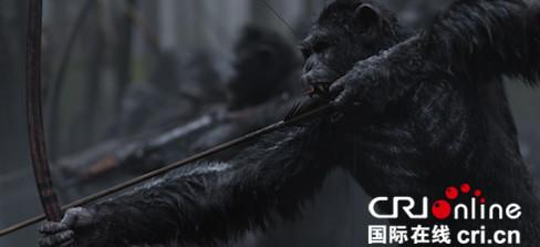 《猩球崛起3》曝光新剧照 人类与猿族的生死大战开打
