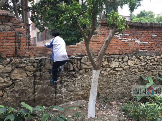 学生为走捷径屡次打缺围墙 小区业委会多次修补