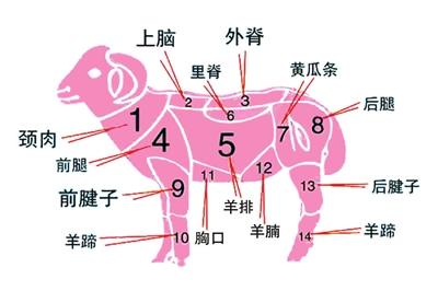根据吃法选羊肉:上脑涮着吃 后腿可爆炒