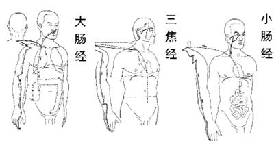 http://www.bjhexi.com/jiankangyangsheng/555482.html