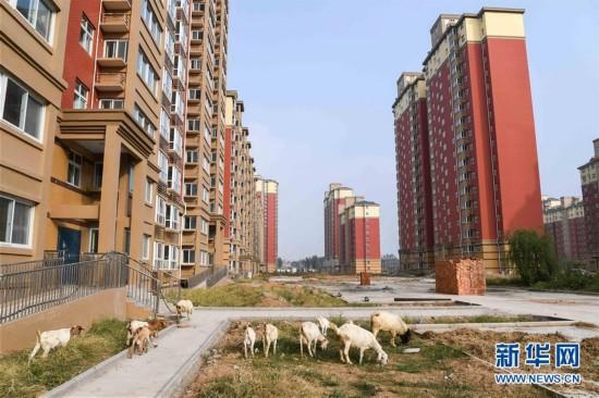 """河南:直接损失600多亿元 """"惠农工程""""成烂尾"""
