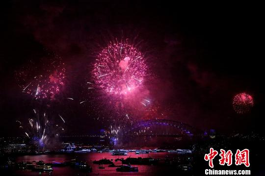 悉尼跨年庆典烟火炫丽绽放。 赖海隆 摄