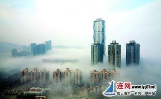 连云港现平流雾景观 如梦如幻宛如仙境