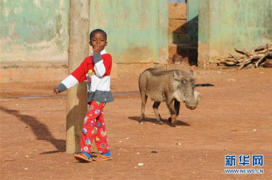 (国际)(7)探访加纳莫雷国家公园