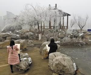 诗意梦幻 河北科技大学校园变身 雾凇城 图