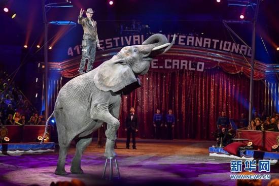 第41届蒙特卡洛马戏节在摩纳哥举行